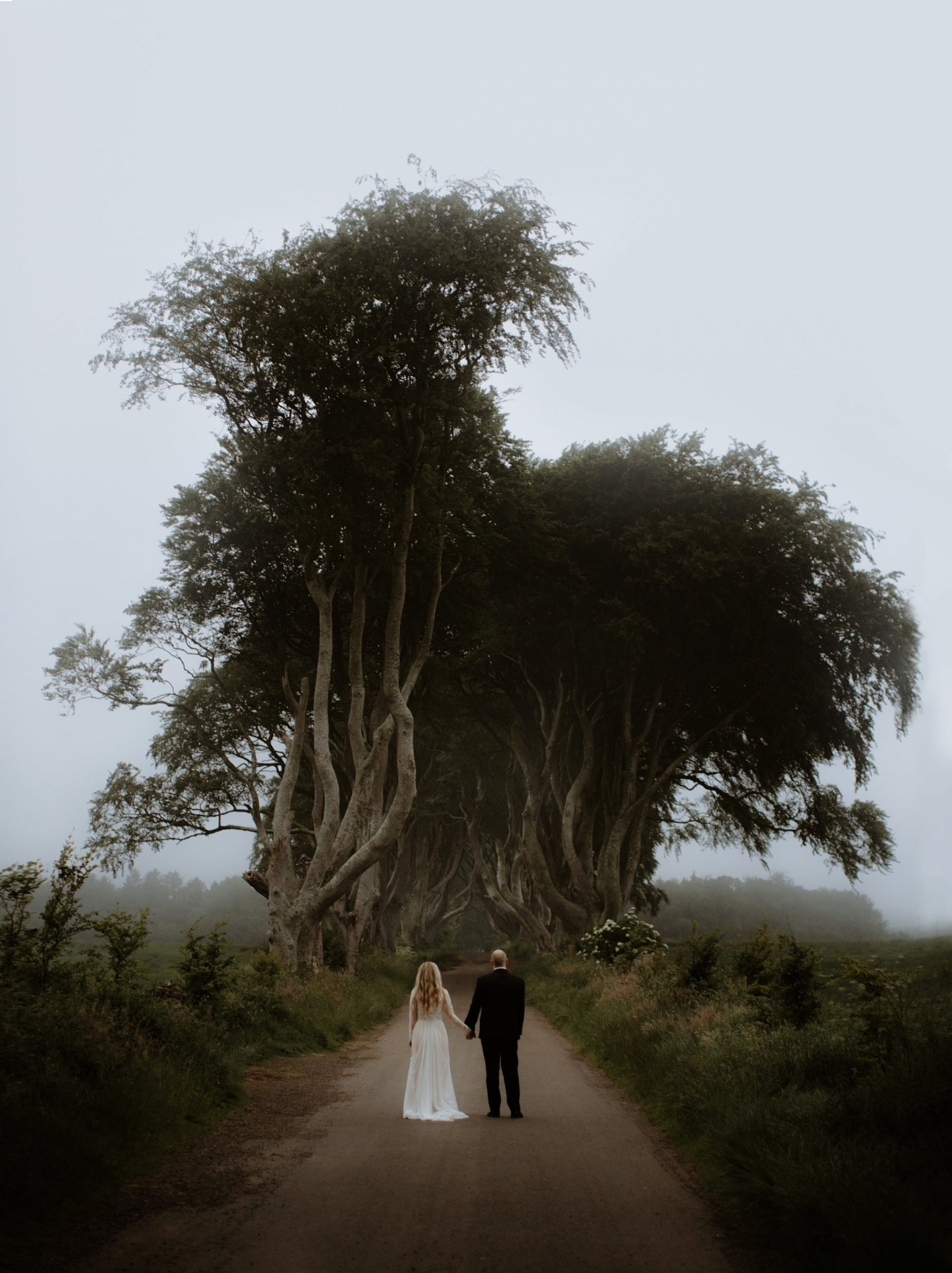 dark hedges elopement